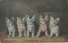 POSTCARD  CATS    We Are Five                       Tuck