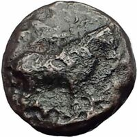 EUOBIAN LEAGUE in Euboia 272BC Authentic Ancient Greek Coin BULL GRAPES i63739