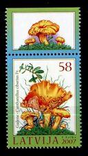 Pilze. Pfifferling. 1W. Rand(5). Lettland 2007
