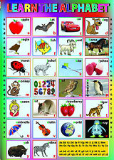 HUGE LAMINATED KNOW / LEARN ENGLISH ALPHABET (A-Z) CHILDREN EDUCATIONAL POSTER