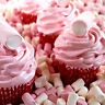 MARSHMALLOW CUPCAKES Fragrance Oil Candle/Soap Making, Bath & Body, Oil Burners