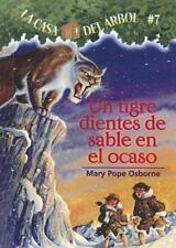 Tigre Dientes De Sable En El Ocaso / Sunset of the Sabertooth (La Casa-ExLibrary