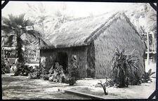 WAHIAWA? HAWAII~ 1900's  THATCHED ROOF HUT ~ PINEAPPLE FARM? Real Photo PC  RPPC