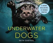 UNDERWATER DOGS BY SETH CASTEEL ILLUSTRATED **NEW**