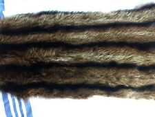 Vintage Raccoon Fur Piece, Fur Coat , Great Color  Craft Projects