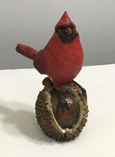 Cardinal Standing On Buckeye Figurine