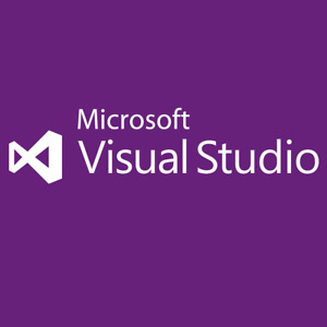 Microsoft Visual Studio 2012 Professional life time