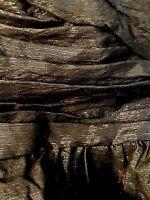 BCBG Generation Dress Size 12 Black Strapless Mini Pleated Side Ruffle