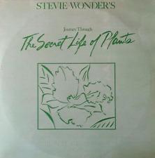 STEVIE WONDER - Journey Through The Secret Life Of Plants (LP) (VG-/G++)