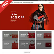 BAGS STORE | Premium Dropshipping Website | Turnkey Business For Sale