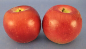 Faux Fake Fruit 2 Small Red Apples Green Accents Plastic Decorative Staging Prop