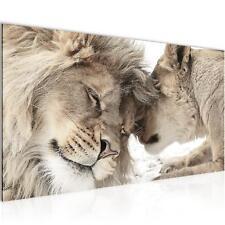 Bild Bilder Wandbild XXL 100x40 cm Löwen - Kunstdruck Leinwand Vlies -  Wanddeko
