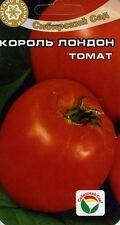 "Tomato ""King  London"" (Siberian Garden)"