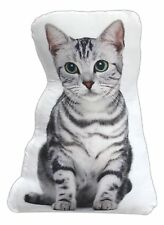 Cat Breed Accent Pillow (Grey Striped Kitten) Decorative Pillow