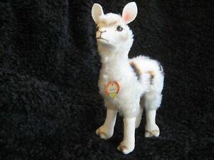 Rare 1957/69 german Steiff Llama w. Chest Tag !