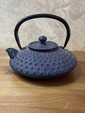 Antique Blue Japanese Kettle Cast Iron Teapot Tetsubin  Porcupine Decorated