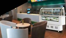 Gelato Case 12 PAN Hard Ice Cream Dipping Cabinet Freezer Display Cabinet 220V