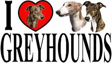 I LOVE GREYHOUNDS Car Sticker By Starprint - Featuring the Greyhound