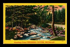 DR JIM STAMPS US STREAM ROAD FOREST GREETINGS CHESHIRE CENTER MICHIGAN POSTCARD
