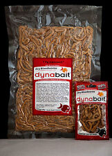 Dynabait Blood 2x and Sand Worms 1x 1kg