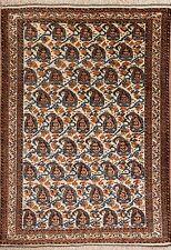 Schirwan Teppich Orientteppich Rug Carpet Tapis Tapijt Tappeto Alfombra Boteh