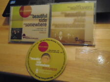 RARE PROMO Wallflowers CD sngl Beautiful Side of Somewhere ACOUSTIC Foo Fighters