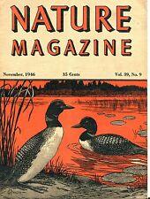 Nature Magazine November 1946 VG No ML 050417nonjhe