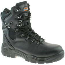 Mens Dickies Quebec Lined Safety Boot Size UK 6-12 Fd23375 Black 10 Fd23375b10