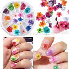 60pcs 3D Dry Flower Nail Art Sticker Dried DIY Tips Acrylic Decoration Wheel Kit
