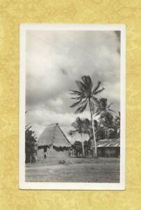 X Panama 1901-39 udb RPPC real photo postcard PALM TREES AND GRASSY HUT