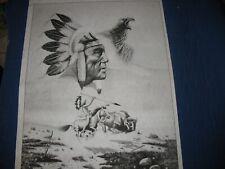* Tri Chem 2585 Buffalo Hunt Eagle Spirit Chief Warrior Picture to Paint Trichem