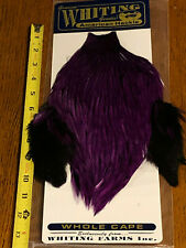 Whiting American Rooster Cape, Badger dyed Purple, Fly Tying