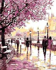 Paint By Numbers Kits For Adult Kids Diy Oil Paint Cherry Blossoms Park 16X20 ""