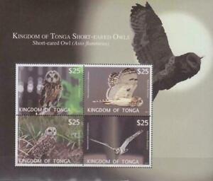 BIRD0041 - BIRDS TONGA 2012 SHORT EARED OWLS BLOCK S/S MNH