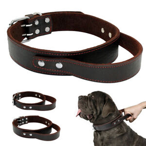 Brown Genuine Leather Dog Collars with Handle For Training Control Pitbull M L