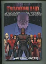 SHADOWLAND Vol 1 - The Battle for the Soul of NY and Daredevil! - HC