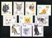 Poland 1964 MNH Mi 1475-1484 Sc 1216-1225 Cats.European,Siamese,Persian cats **