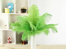 green 10 pcs  Ostrich feathers 6-8 inches 15-20cm hot sales