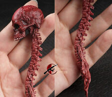 "1/6th Scale Red Zombie Skull Skeleton Head Model Toy For 12"" Action Figure Body"