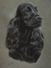 Black Cocker Spaniel Dog Print - approx 16 x 12
