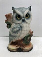 Owl Figurine Animal Wildlife Owl Sitting On a Tree Branch