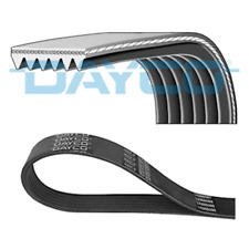 V-Ribbed Belt DAYCO 6pk1660