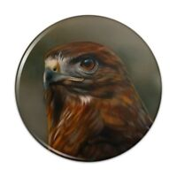 Red-Tailed Hawk Raptor Portrait Pinback Button Pin
