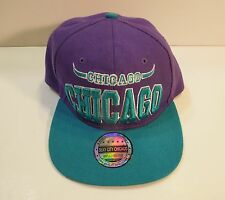 CHICAGO  Sexy City Snapback Cap Hat Bulls Air Jordan Two Tone Purple Green