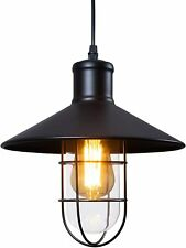 Industrial Farmhouse Light Fixture with cage and Glass Shade Retro Pendant Light