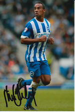 BRIGHTON HAND SIGNED CHRIS O'GRADY 6X4 PHOTO 2.