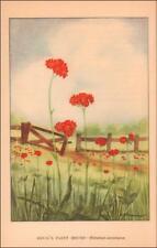 DEVILS PAINT BRUSH, PLANT, BOTANICAL, VINTAGE PRINT AUTHENTIC 1926