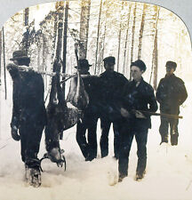 Keystone Stereoview of 5 Hunters Carrying a Dead Deer out of the Forest # 11635