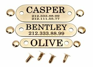 Dog Collar Nameplate Tag Personalized Brass or Stainless Steel