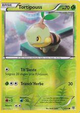 Tortipouss Reverse-N&B:Tempête Plasma-1/135-Carte Pokemon Neuve Française
